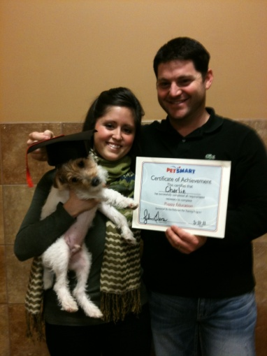 Charlie's Obedience Graduation
